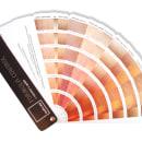 """quattro idcp - Moreno's Guide. Un proyecto de Diseño, Publicidad y Marketing de quattro idcp Agencia de Publicidad Integral. Creatividad y mucho """"sentidiño"""". - 13.08.2009"""