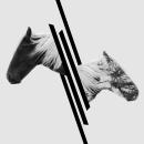 Two sides. A Design, Illustration, Fotografie und Grafikdesign project by Lynn Design - 28.01.2015