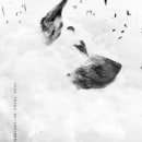 Heaven Dog.. A Fotografie und Illustration project by Lynn Design - 09.02.2015