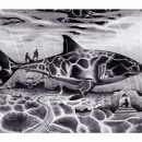 Shark. Un projet de Beaux Arts de Maru Stahl - 18.03.2015