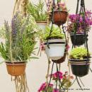 Mini jardín con cápsulas de café Dolce Gusto - Reciclado, reciclaje, upcycling. A Crafts project by Rosa Montesa Reciclado Creativo - 06.09.2015