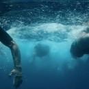 San Miguel 0,0% Isotónica by Alberto Blanco. Un proyecto de Publicidad, Cine, vídeo, televisión y Vídeo de BLUR Films - 31.08.2016