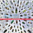 The Japanese Album. Um projeto de Música e Áudio de Saúl Roldán Álvarez - 25.10.2016