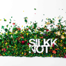 Colección Primavera Verano 2015 Silkknot. Um projeto de Design, Fotografia, Br e ing e Identidade de mapaestudio - 15.05.2015