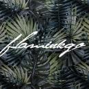 Web design: Flaminkgo Studio.. Un progetto di Web Design di Sandra Gil Escrichs - 23.11.2017