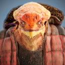 LizardMan. Un proyecto de 3D de Gino Ardelean - 26.04.2018