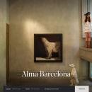 Alma Hotels. Un progetto di Web Design di DOMO—A studio - 15.06.2017