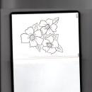 Flores de mi bitacora . Um projeto de Design gráfico e Ilustração de Maria Fatima Sosa - 15.07.2018