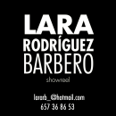 Showreel. Um projeto de Cinema, Vídeo e TV, Design gráfico e Animação 2D de Lara Rodríguez Barbero - 22.08.2018