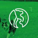 El amigo fiel. Un proyecto de Br, ing e Identidad, Ilustración vectorial e Ilustración digital de Marta Bolancel - 04.12.2018