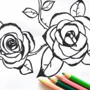 Ilustraciones . Um projeto de Desenho e Ilustração de Maria Cecilia Mennucci - 10.12.2018