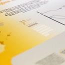 La repressió de la llengua catalana. A Infographics project by Marina Vidal Calvet - 01.20.2018