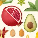 Botánica. Colección de ilustraciones de plantas.. Um projeto de Ilustração, Direção de arte, Pattern Design e Ilustração vetorial de David Comerón - 11.02.2019