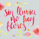 Mi Proyecto del curso: Técnicas aplicadas de ilustración en acuarela. Um projeto de Ilustração e Lettering de Luciana Ferreyra - 10.04.2019