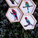 Colección Pájaros de Antioquia. . Um projeto de Design industrial de Lina Montoya - 01.09.2018