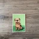 Mascotas. Un proyecto de Pintura de Marina Benito - 30.05.2019