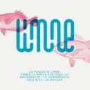 Fundació Limne. Un proyecto de Diseño, Ilustración, Br, ing e Identidad y Diseño de logotipos de LOCANDIA Estudio - 25.06.2019