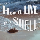 Gimaguas - How to live in a shell. A Film, Video, TV, Video, Fashion Design, and Filmmaking project by Biel Blancafort - 07.02.2019