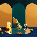 Vida Bebida Kombucha. Un progetto di Illustrazione, Br, ing e identità di marca , e Packaging di Mariela Mezquita - 01.03.2019