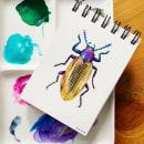 DIARIOS - MIS INSECTOS. Un proyecto de Ilustración y Pintura a la acuarela de Paulina Maciel · Canela - 04.10.2019