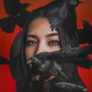 Birds. Un proyecto de Fotografía, Retoque fotográfico, Fotografía de retrato, Fotografía digital y Fotografía artística de Pam Pam - 14.11.2019