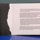 Crimen, sabotaje y creación de Lagartija Nick. Un proyecto de Publicidad, Br, ing e Identidad, Collage, Cop, writing, Arte urbano y Redes Sociales de Isabel Daza - 12.12.2019