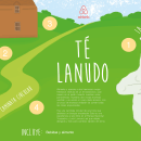 airbnb Té Lanudo. Un proyecto de Ilustración digital de alehueso99 - 19.02.2020