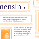 Carmensin. A Graphic Design, T, pograph, T, pograph, and design project by Rafael Jordán Oliver - 02.25.2020