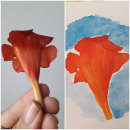 Primer prueba: proyecto de flor natural. Un proyecto de Pintura a la acuarela de Sinergia Multitienda - 03.03.2020