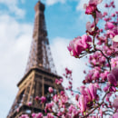 París. A Instagram photograph project by Nicolás Ferreyra - 03.13.2020