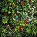 Canopy. Un progetto di Belle arti, Collage , e Fotografia digitale di Nick Pedersen - 01.04.2020