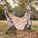Escrito en las hojas. Um projeto de Fotografia, Artes plásticas, Paisagismo, Escultura e Fotografia artística de Verónica Vicente - 01.01.2020
