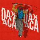CARNAVAL OAXACA. Un projet de Conception digitale et Illustration numérique de Oscar Carreon - 12.05.2020