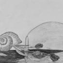 Dibuix imaginari. A Pencil drawing project by Abril Calero Ventura - 05.14.2020