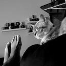 Naquele exato momento.... Un proyecto de Fotografía documental de gustavo reis pereira - 16.05.2020