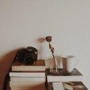 Mi Proyecto del curso: Fotografía profesional para Instagram (@book.cat.tea). A Photograph, Marketing, Social Media, Product photograph, Digital Marketing, Fine-art photograph, Instagram, Content Marketing, Commercial Photograph, Instagram photograph & Instagram Marketing project by Ana - 06.12.2020