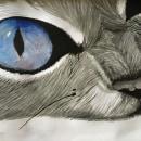 Te .... Un proyecto de Concept Art, Dibujo artístico y Fotografía artística de Estefany - 01.05.2010