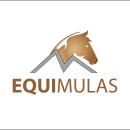 EQUIMULAS. Un proyecto de Diseño de logotipos de Santiago Velasquez - 02.07.2020