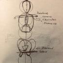 Mi Proyecto del curso: Dibujo anatómico para principiantes. A Pencil drawing, and Figure drawing  project by Carlos Lara - 07.28.2020
