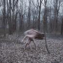 Lieber Geist  (2016) / Querido Fantasma. A Photograph, Fine-art photograph, Outdoor Photograph, and Analog photograph project by Irene Cruz - 05.15.2016