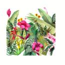 LOVE GROWS IN NATURE. Un proyecto de Ilustración, Publicidad, Pintura a la acuarela e Ilustración botánica de Paulina Maciel · Canela - 08.11.2020