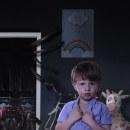 Aracnofobia . Um projeto de Fotografia, Retoque fotográfico, Composição Fotográfica e Fotomontagem de Candy Boy - 18.11.2020