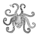 Pulpo. A Drawing project by Mar Asulay - 11.30.2020
