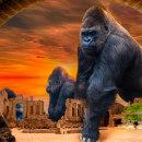 """Mi Proyecto del curso: Secretos del fotomontaje y el retoque creativo """"King Kong ha crecido"""". Um projeto de Fotografia digital e Fotomontagem de María Gracia Morales Jiménez - 23.12.2020"""