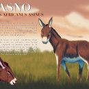 Mi Proyecto del curso: Ilustración naturalista de animales con Procreate. Un proyecto de Diseño, Ilustración, Infografía e Ilustración naturalista de Jesús Eduardo Liy Marin - 29.12.2020