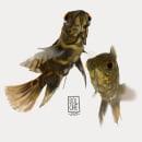 PECES. Un proyecto de Ilustración y Concept Art de Dolche FarNiente - 31.12.2020