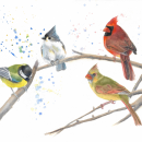 My project in Artistic Watercolor Techniques for Illustrating Birds course. Un progetto di Pittura ad acquerello di svetlana42 - 12.01.2021