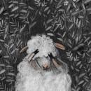 La oveja ofelia. Um projeto de Ilustração infantil de Elizabeth Builes Carmona - 16.02.2021