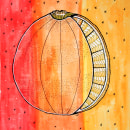 acuarelas naranja. Um projeto de Pintura em aquarela de Lucia Lara - 17.02.2021