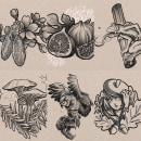October Drawing Challenge in Tattoo style. Um projeto de Ilustração, Ilustração digital, Desenho de tatuagens, Ilustração botânica e Desenho digital de Ksenia - 20.10.2021